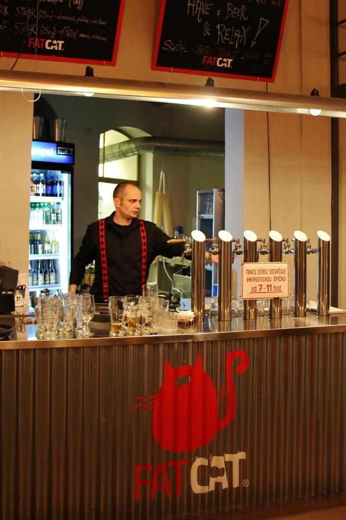 Fat Cat Brewery and Pub bar, Prague, Czech Republic