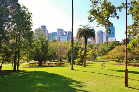 CBD View from City Botanic Gardens in Brisbane, Australia