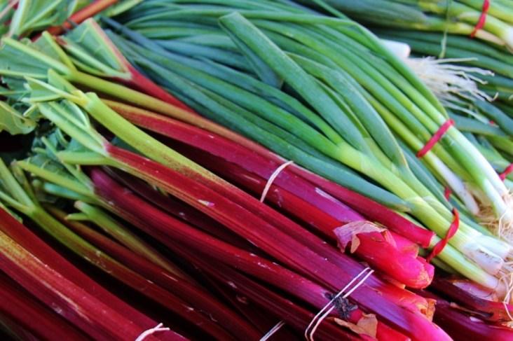 Fresh rhubarb and green onions at Powerhouse Farmers Market in Brisbane, Australia