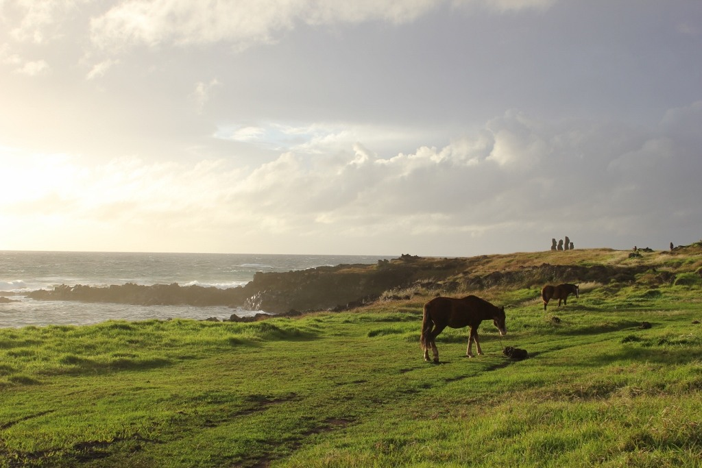 Grazing horses at Tahai on Easter Island, JetSettingFools.com