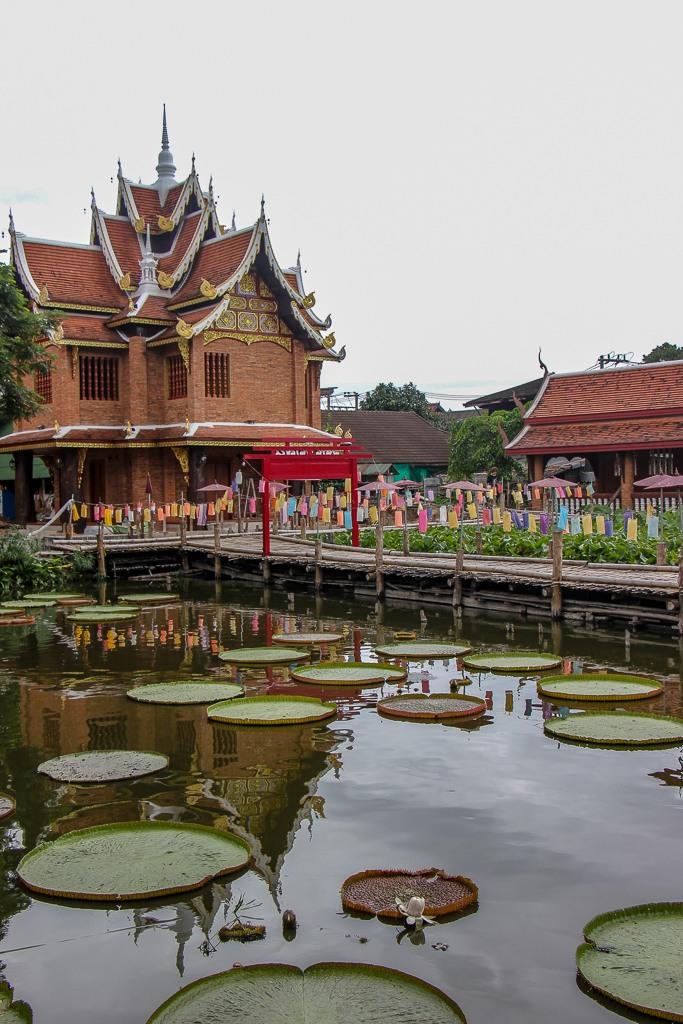 Lily pad and Lotus Pond at Wat Jetlin in Chiang Mai, Thailand