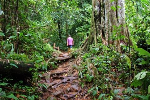 Hiking the trail to Khun Korn Waterfall in Chiang Rai, Thailand