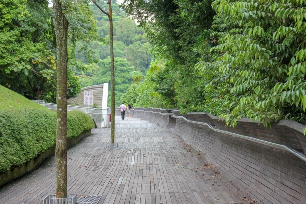 Wooden-planked bridge, Henderson Waves, at Southern Ridges in Singapore