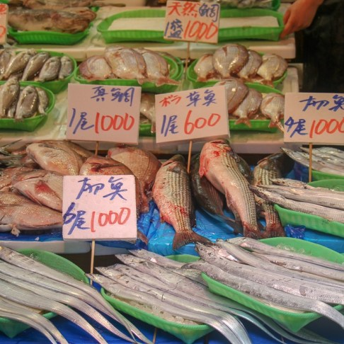 Fresh fish for sale at market in Tokyo, Japan