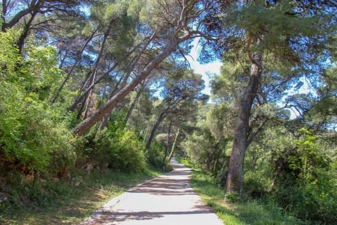 Hiking trail in Lapad near Dubrovnik, Croatia