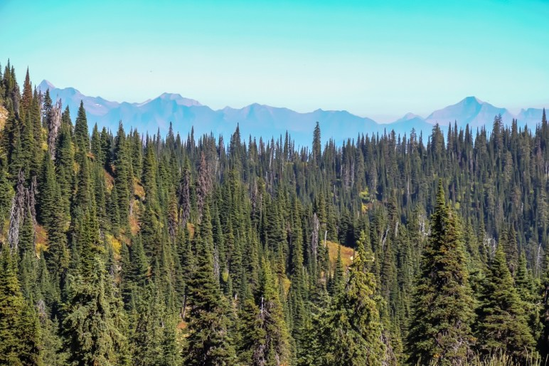 Views over Whitefish, Montana