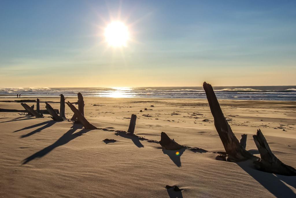 Sunshine along the Sandy Beaches, Florence, Oregon