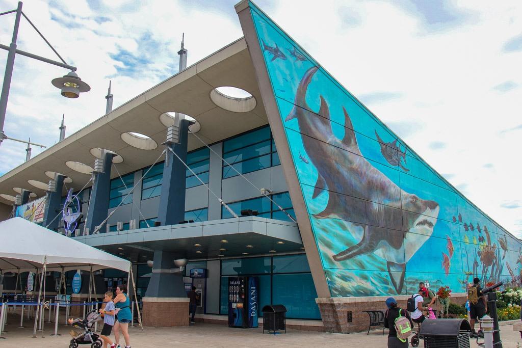 Visit the Aquarium, Newport, KY