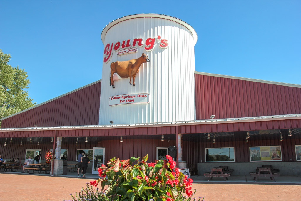 Taste the Cheese at Young's Jersey Dairy Farm