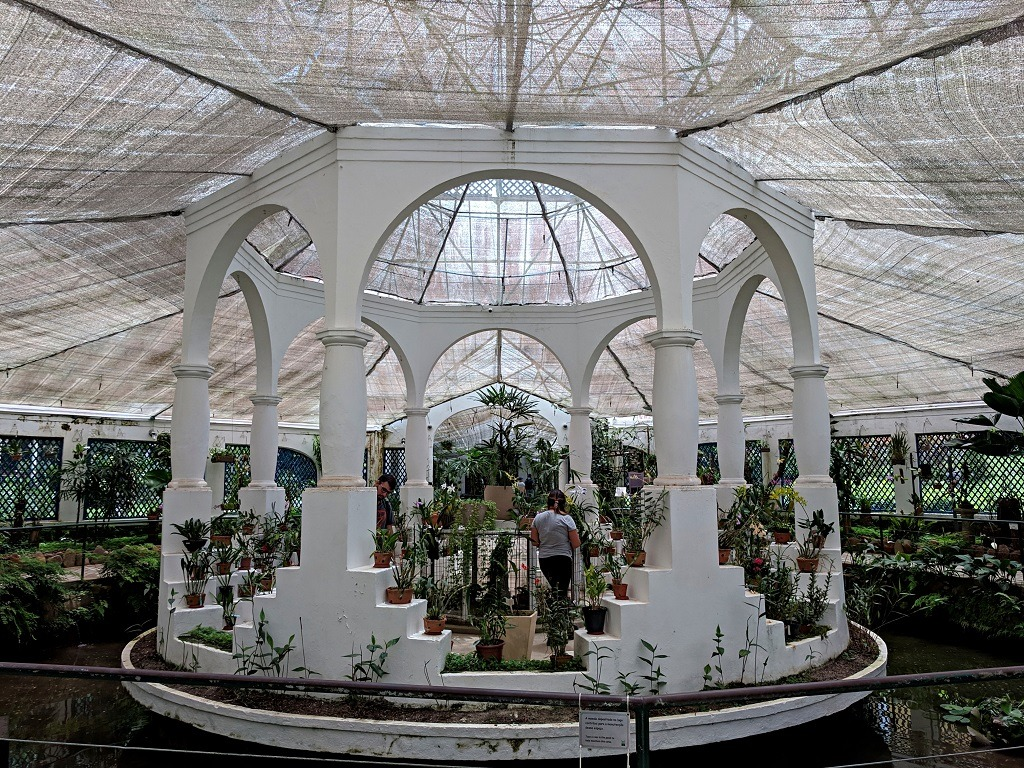 Visiting Jardim Botânico do Rio de Janeiro. Orchids greenhouse