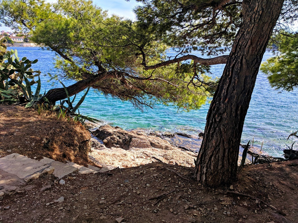 What To Do Around Hvar Town: Take A Stroll Through The Pine Forest