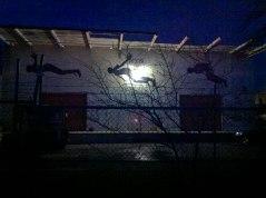 jamaal flying at night