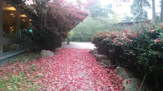 Vår entre på HK är så vacker på hösten