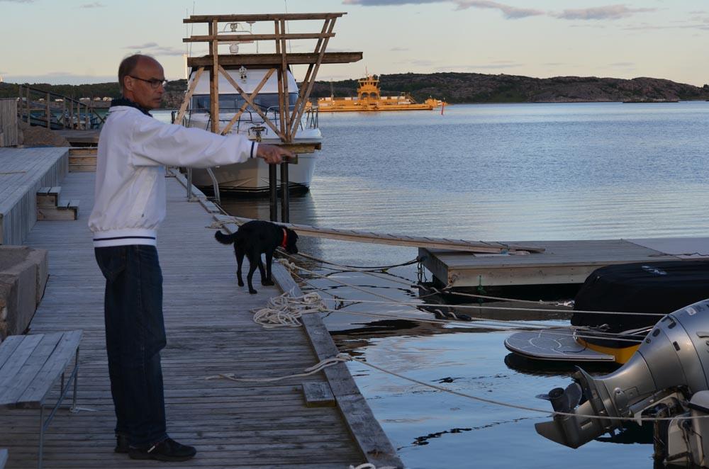 Massor av krill i vattnet.. Överallt!  Birger pekar ut dem för Doris.