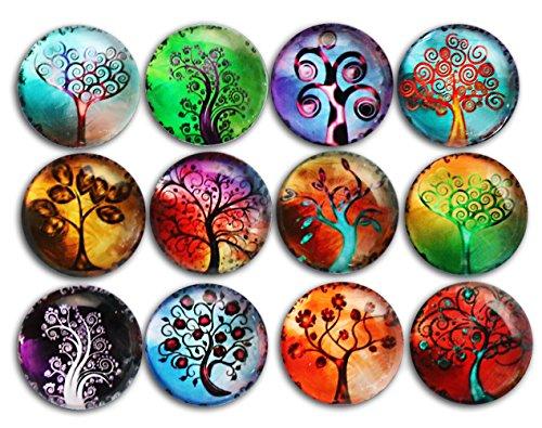 Refrigerator art birthday calendar jetts kitchen magnets trees solutioingenieria Images
