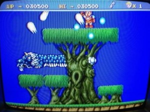 legend of hero tonma pc engine 09