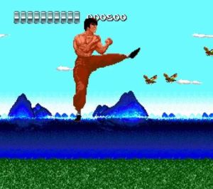 the kung fu 02