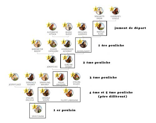 Complete pedigree without consanguinity