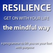 The Mindful Resilience Programme