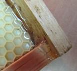 Hot glued hive frame corner