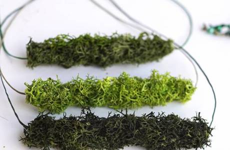 Straw Moss DIY Jewelry Pendant