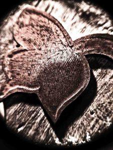 Copper Impression Header sm