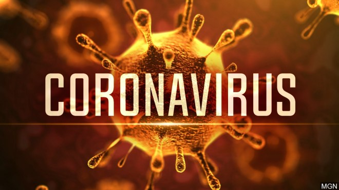 corona virus flu coronavirus immune system health