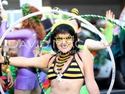 MArdi Gras 2015 Me Bee - David Mackay pic
