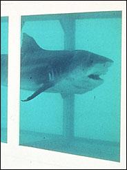 $8 million formaldehyde shark. YUM!