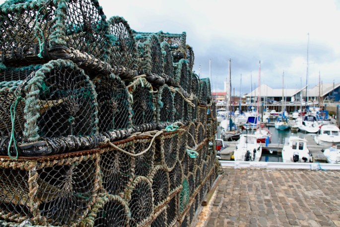 Lobster creels in Arbroath Harbour by Jez Braithwaite