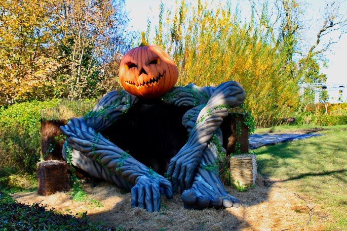 Giant Pumpkin Man at Glasgow Botanic Gardens by Jez Braithwaite