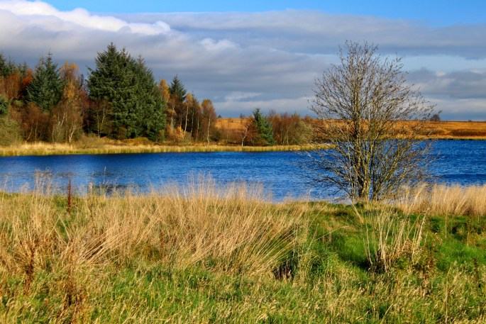 Fannyside Loch
