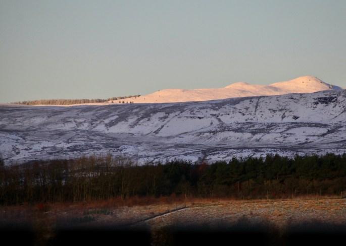 Menzie Hills