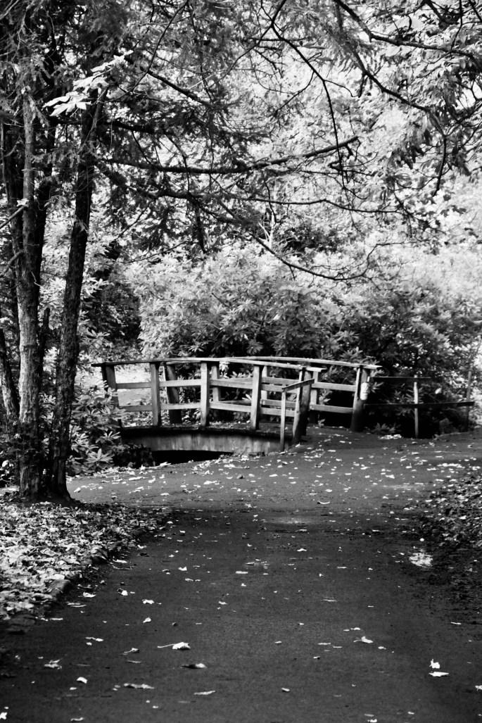 Footbridge in Pollock Country Park