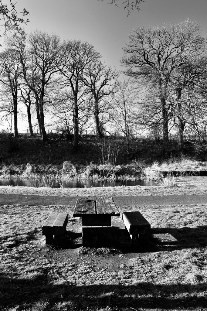 Picnic bench at the Forth & Clyde Canal