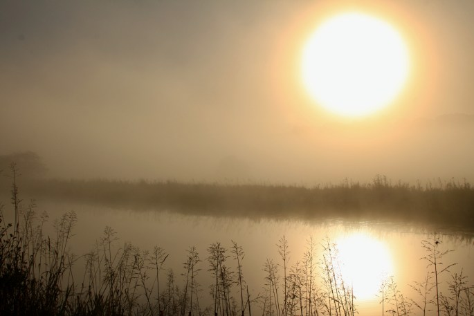 Misty Forth & Clyde Canal