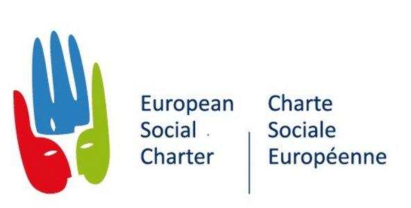 Les droits sociaux constitutionnels et la Charte sociale européenne [Actes du colloque d'Istanbul]