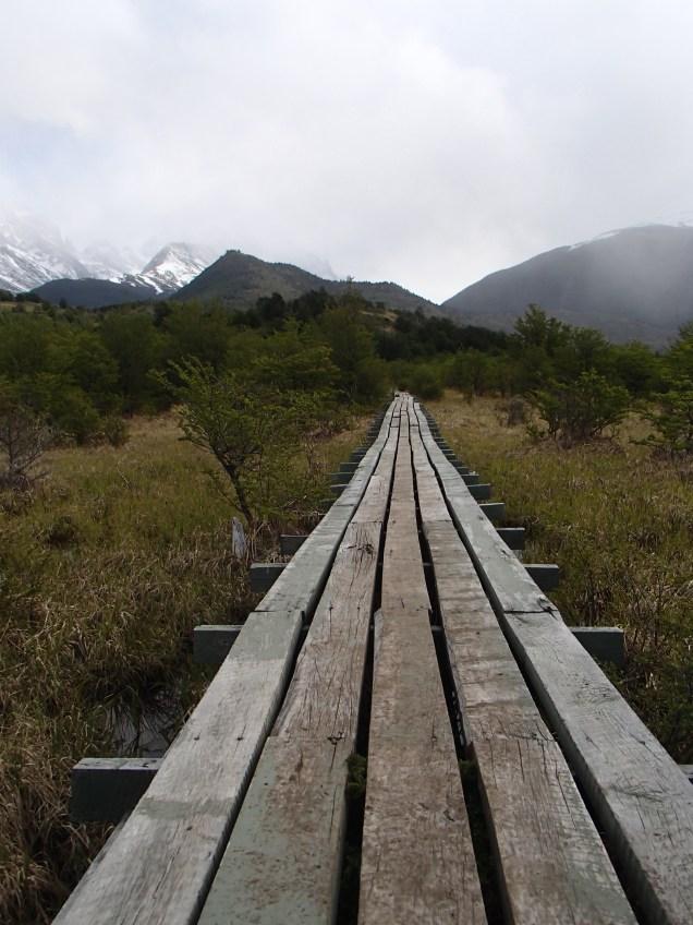 A helpful boardwalk through a bog