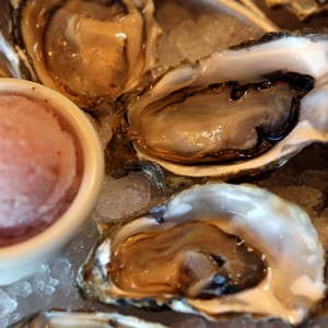 Elliotts-oyster_0145_rs2-300x300