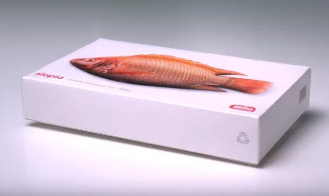 emballage poisson supermarcé Mila