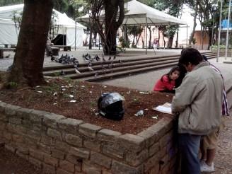 Tradicionais habitantes do Parque, os pombos dividem espaço com os colecionadores