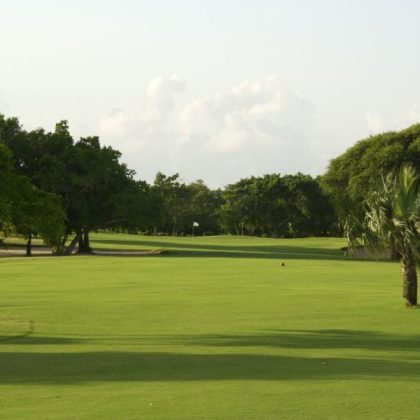 COCOTAL GOLF   COUNTRY CLUB     Jellyfish Travel Agency COCOTAL GOLF   COUNTRY CLUB