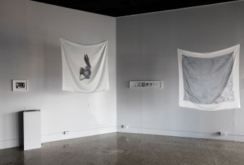 Indelible Installation at Islander Gallery