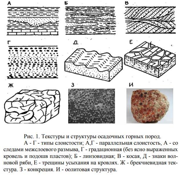 Structuur van sedimentrotsen