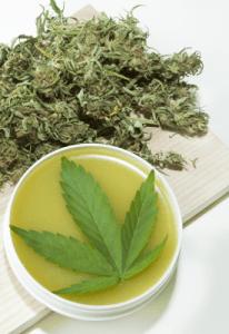 Cuando no es delito el cultivo de cannabis