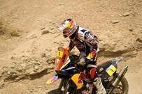 Cyril Despres (FRA)