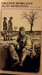 cover of Orange Morgan (Book)
