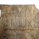What's in a Name? Anonymity in the Authorship of Babylonian Scientific Texts