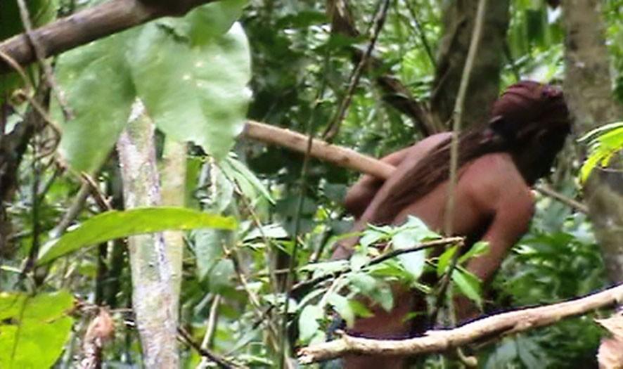 ISOLADO – Funai divulga vídeo de indígena que é último sobrevivente de sua tribo