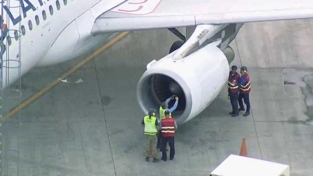 Pássaro atinge motor de avião da Latam e piloto interrompe viagem